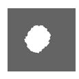 icons1-manu